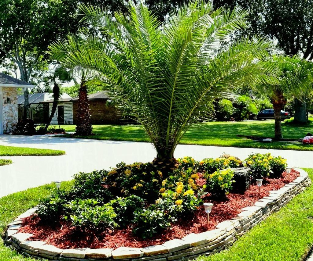 Beautiful Small Palm Trees Gardening Ideas For Backyard 36 Palm Trees Landscaping Small Tropical Gardens Garden Ideas For Small Yards
