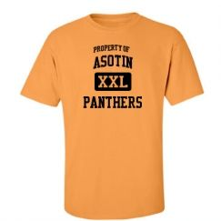 Asotin Junior Senior High School - Asotin, WA | Men's T-Shirts Start at $21.97