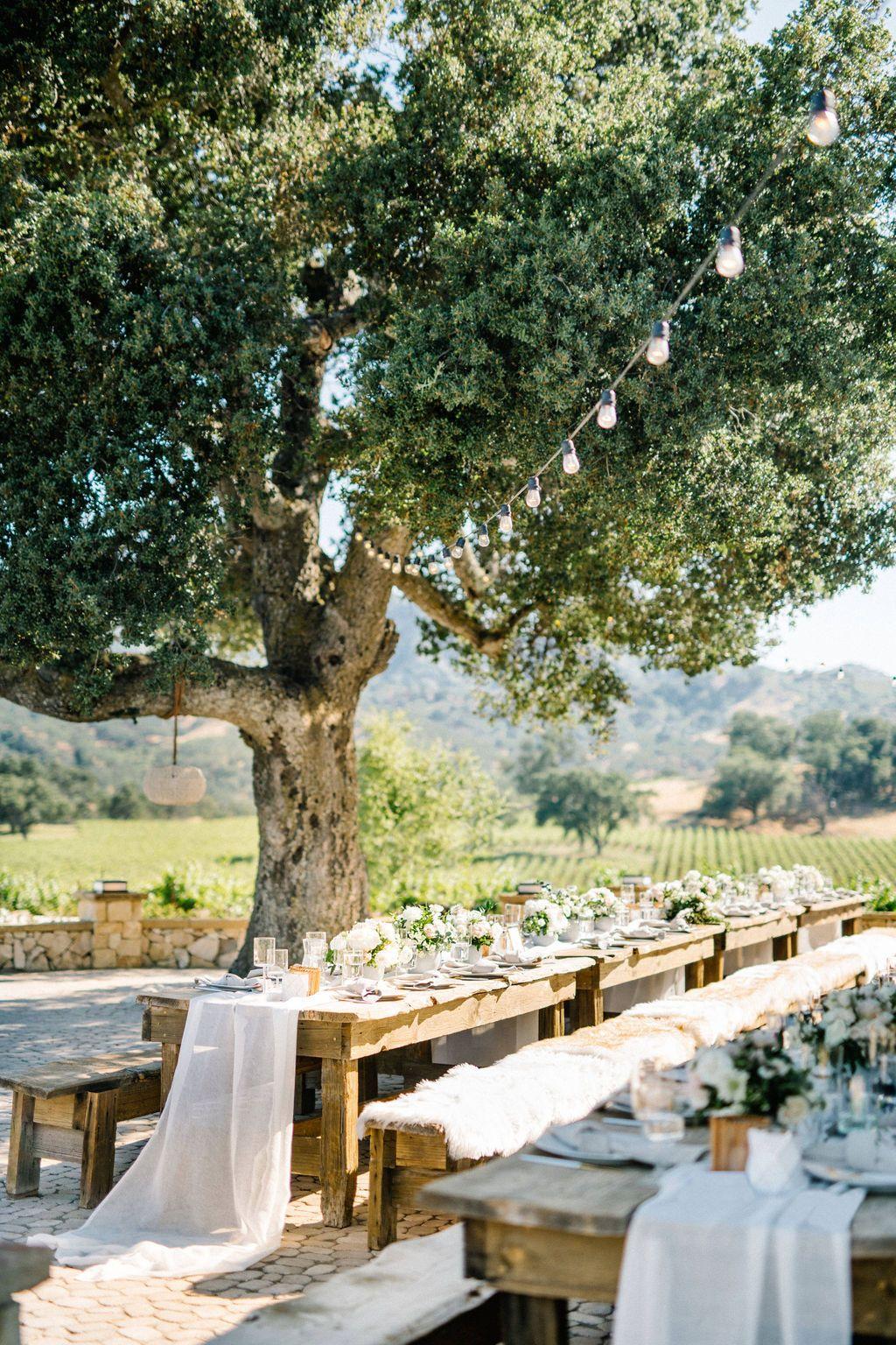 oysterridge barnwedding californiawedding