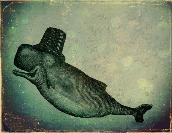 whale of a tale/ too cute.