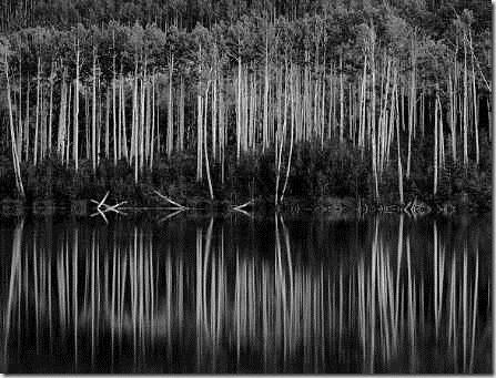 Resultado de imagen de - Ansel Adams - Paisaje y profundidad de campo