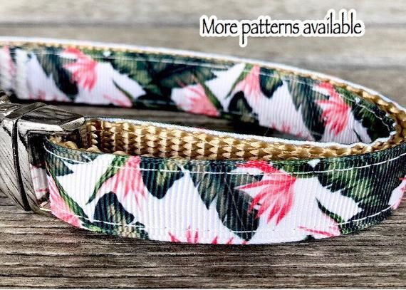 Palm Fronds Foliage 5 8 Wide Dog Collars Leash Or Harness
