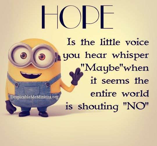 Minion Quotes Wtf: Pin By Shannon Blatchford On Smile Some More