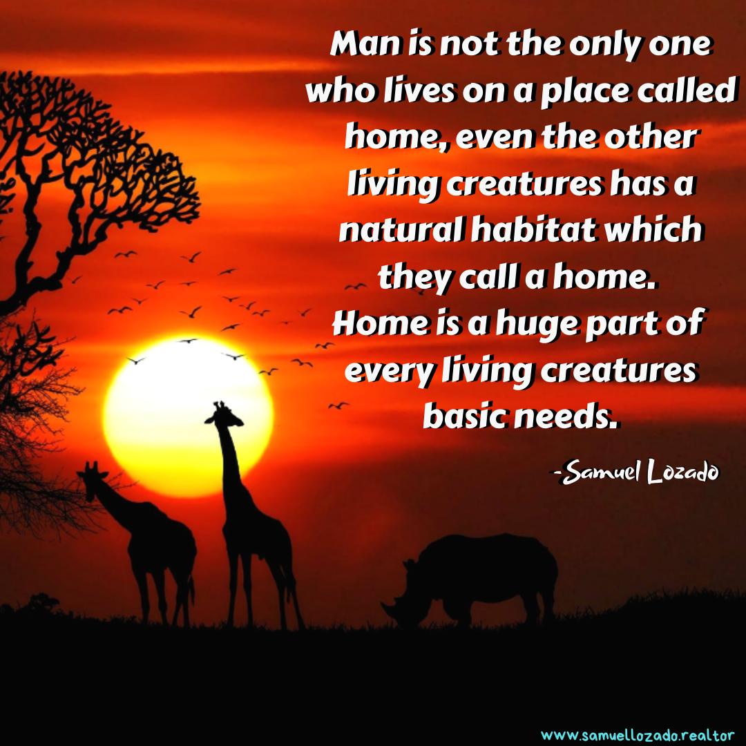 Samuel Lozado Real Estate Quote