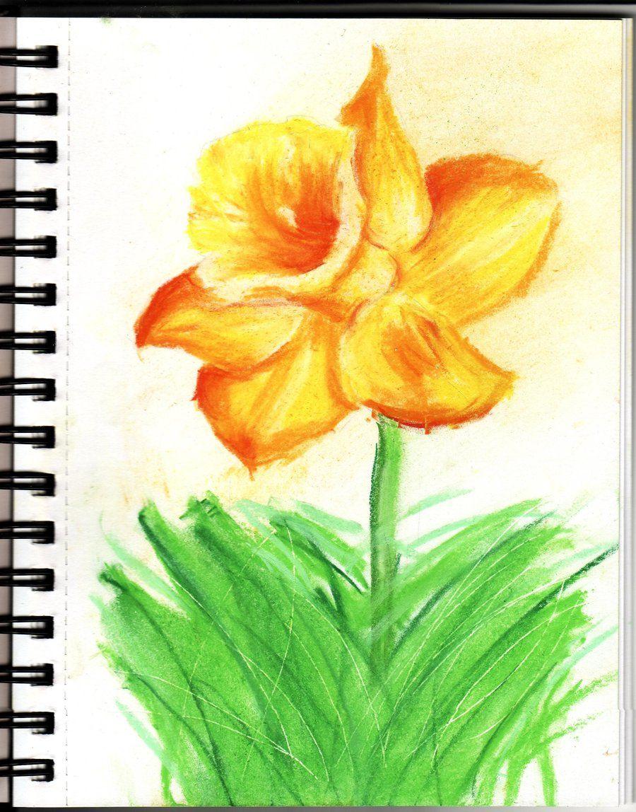 Chalk Pastels | Daffodil - Chalk Pastels by ~BlackRoseRuby on deviantART