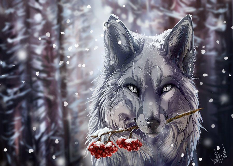 Frozen Anime Wolf Wolf Wallpaper Fantasy Wolf Anime wolf wallpaper hd