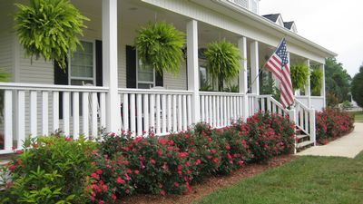 Knockout Roses Landscaping Ideas Knock Out Roses Americas