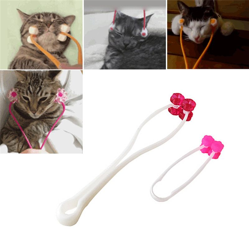 Cat Alat Cat Wajah Tipis Pijat Roda Rol Kaki Bantuan Dan Kaki