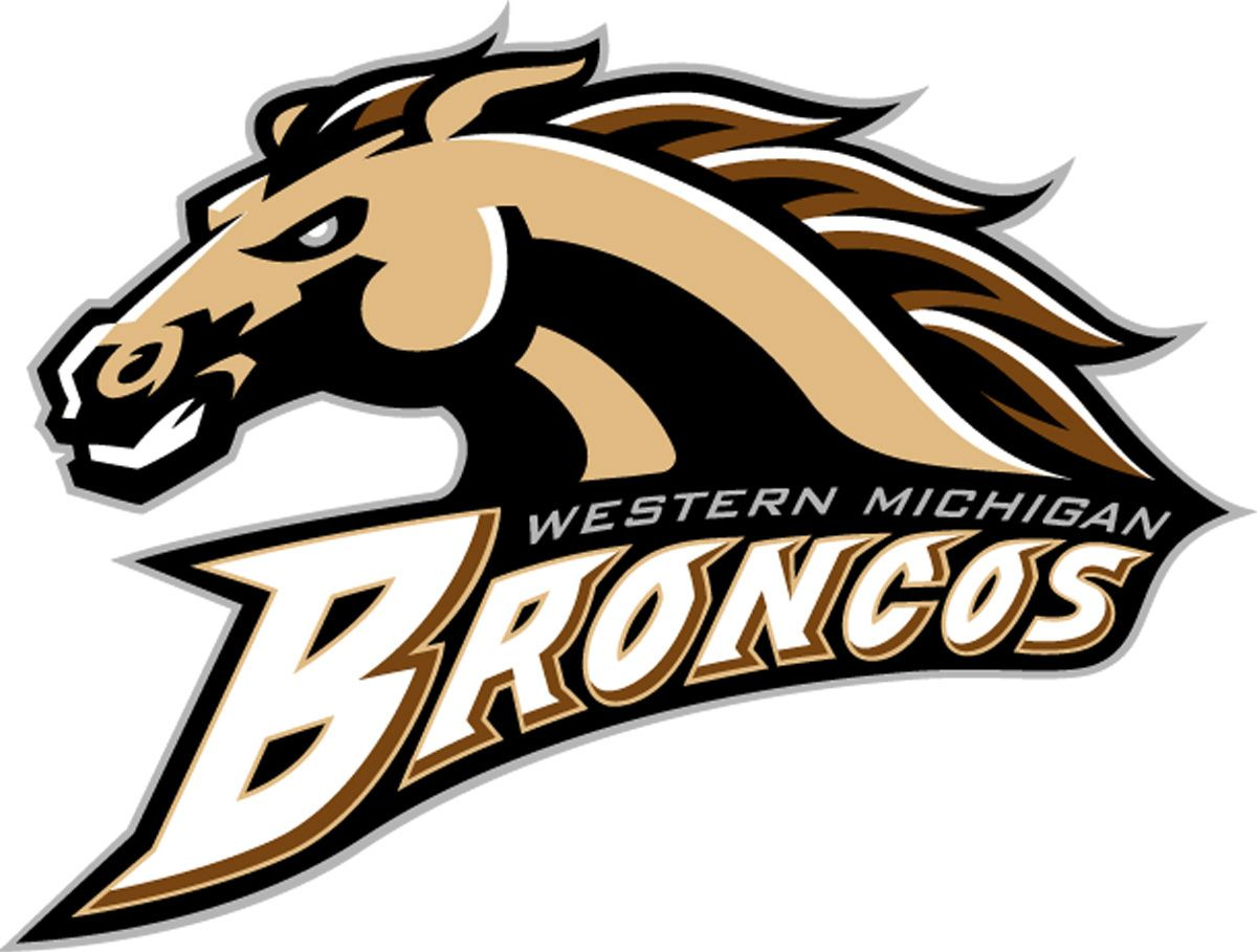 Image result for western michigan university