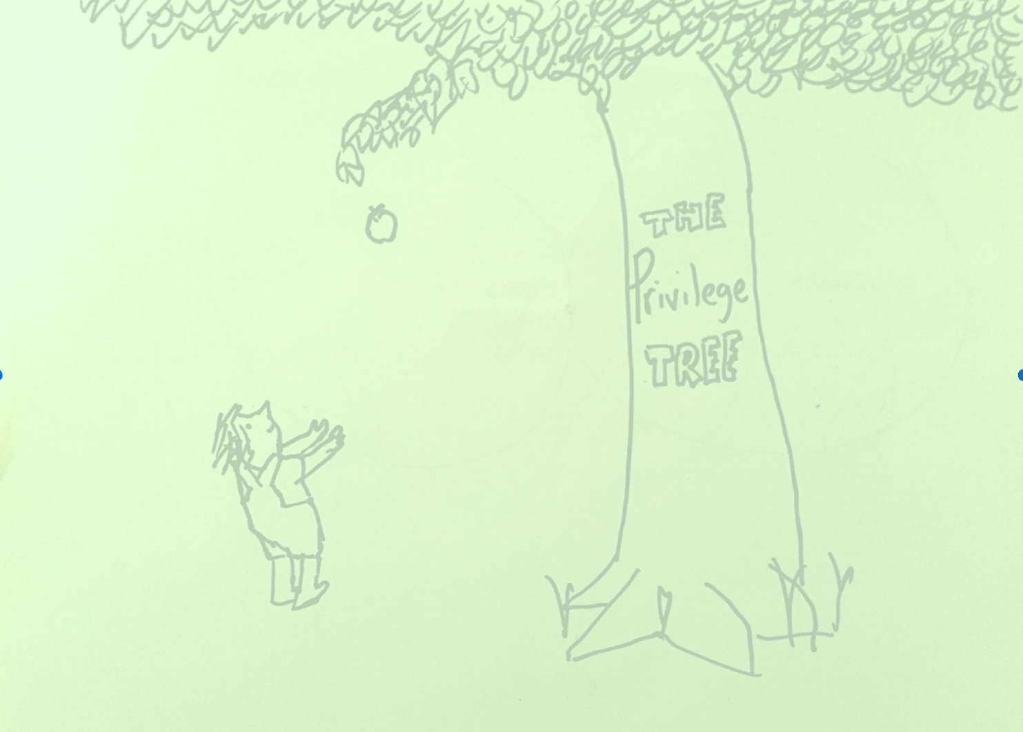 Ryan Lochte And The Privilege Tree