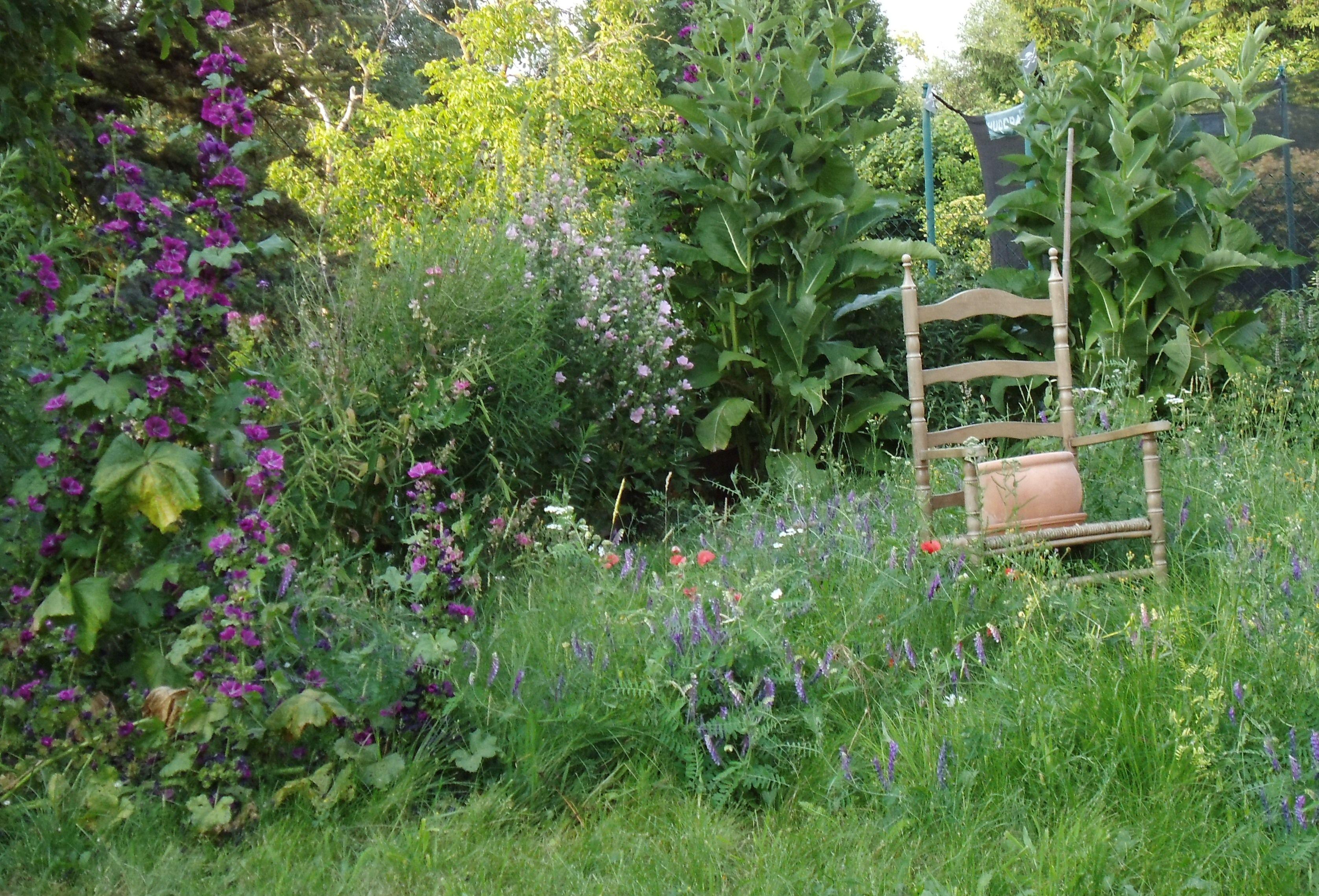 Naturgarten   Naturgarten, Garten, Natur