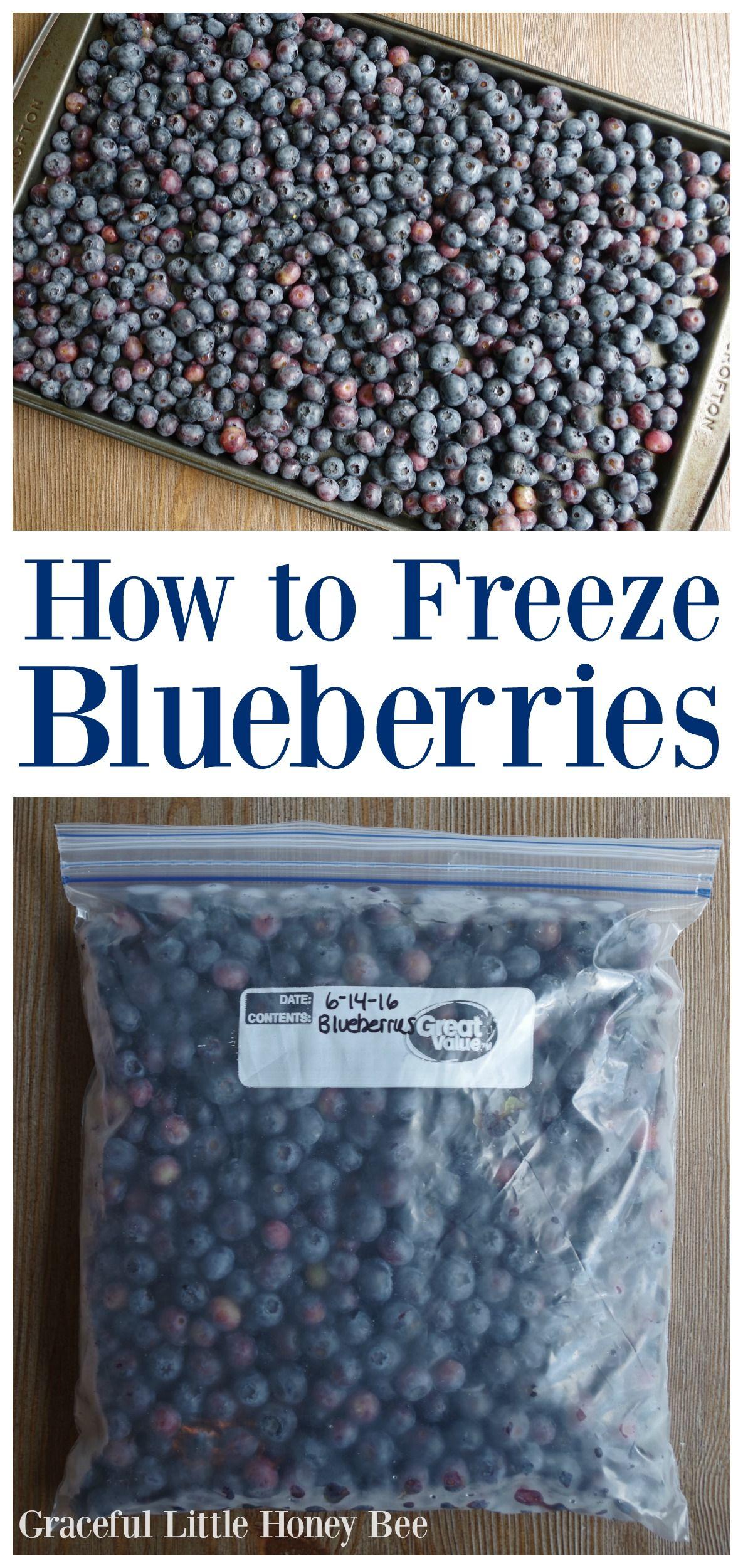 How to Freeze Blueberries Frozen blueberries, Frozen