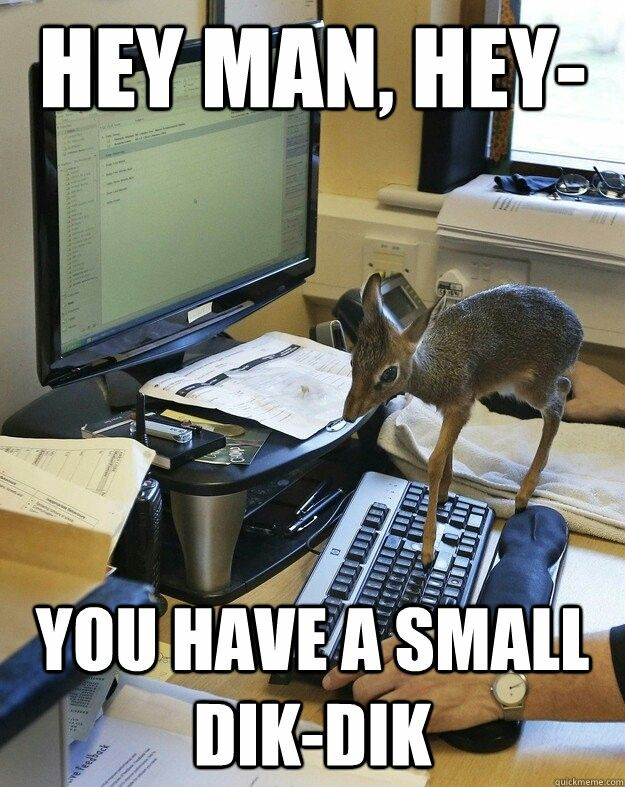 Hey Man You Have A Small Dick Dik Mothafcking Dik Diks
