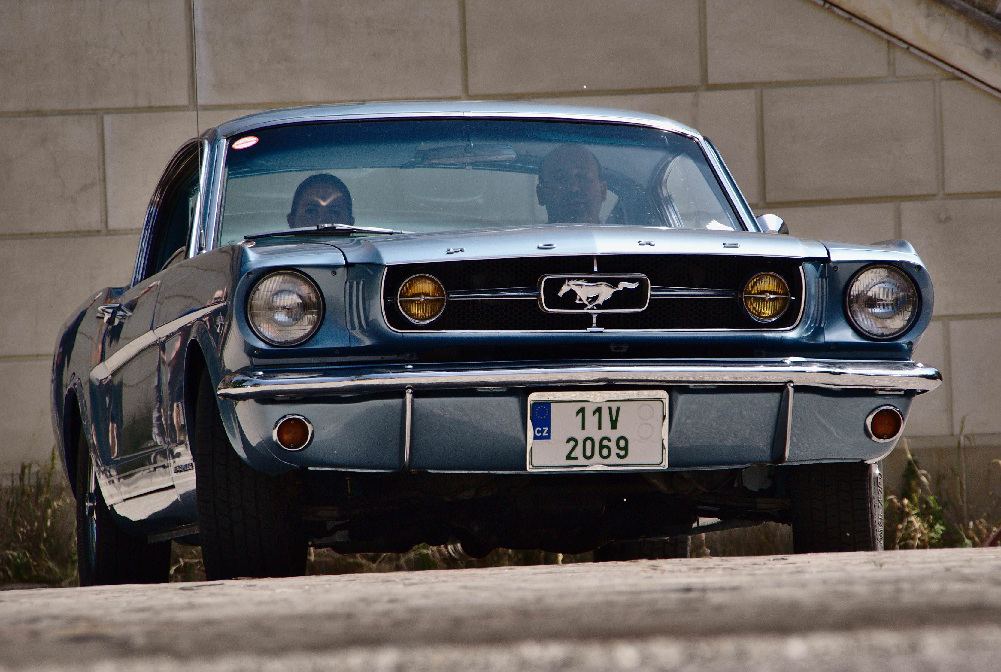Beautiful mustang fastback 1965 at local oldtimer meet mustang fastback ford mustang quatro
