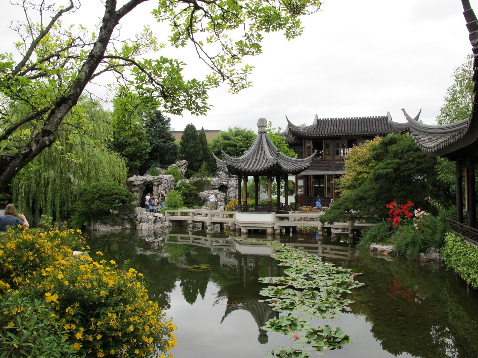 chinese water garden includes over 400 plant species