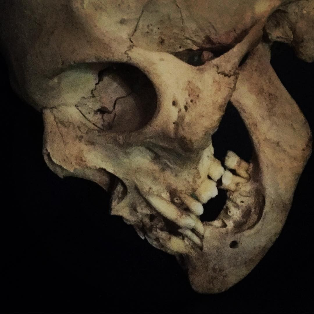 Pin von Tomás SP auf skull | Pinterest | Totenköpfe und Schädel