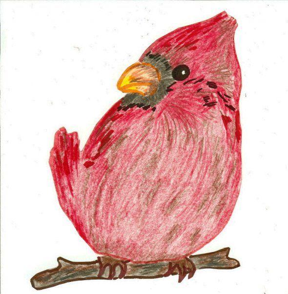 Bird. color pencil