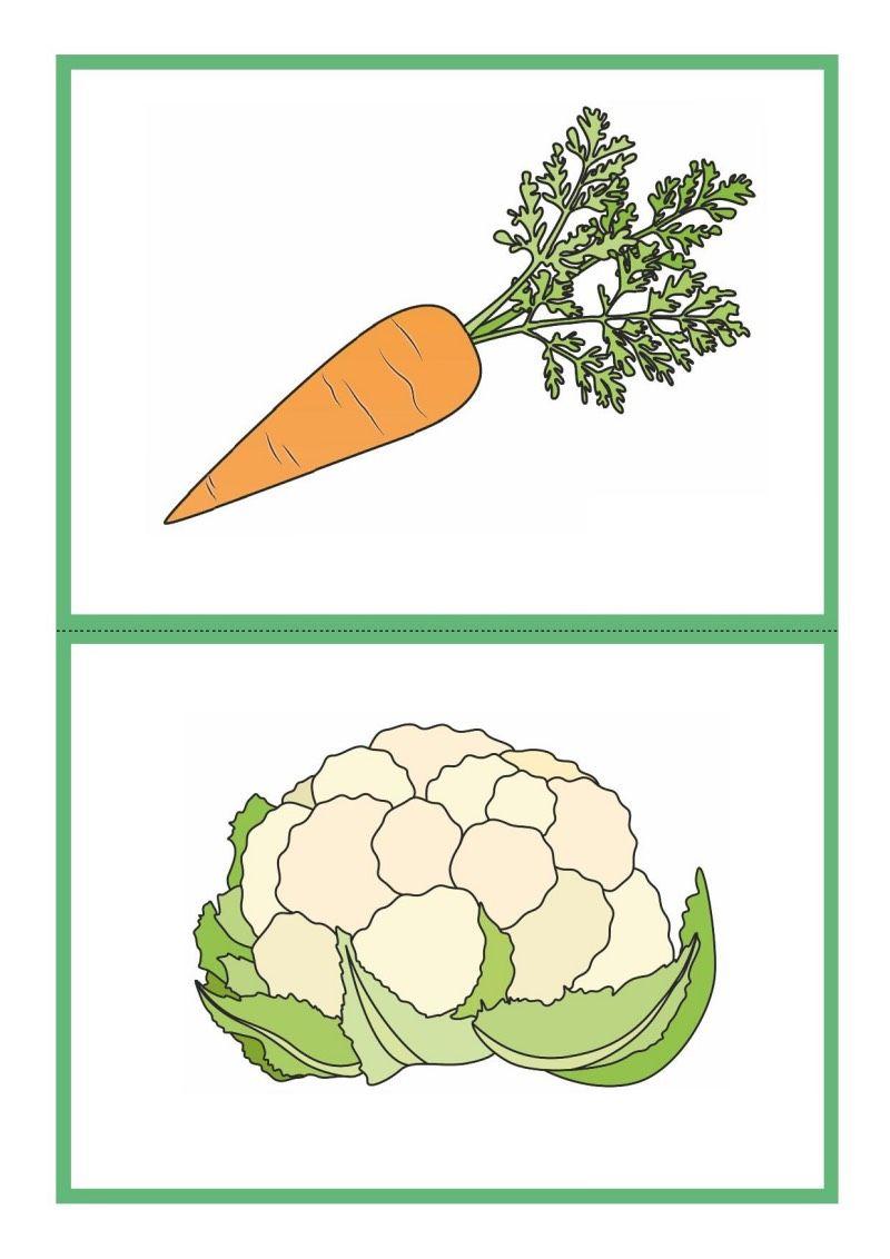 Tablice Edukacyjne Warzywa Do Druku 12 Enamel Pins Miki