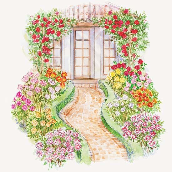 Front yard rose garden plan garden planning for Plan your garden ideas