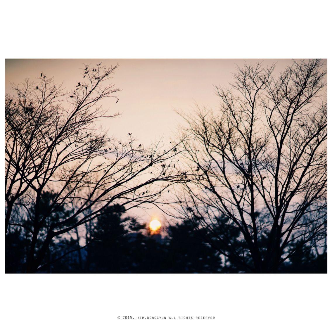 왠지 오늘따라 슬픈 노을.... #SonyA7 #이종교배 #NikonLens #Nikkor105mmF1.8 #snap #35mm #analog #Photoholic #감성사진 #김군photograph