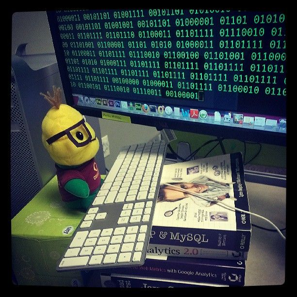 Niblet Spent Yesterday Afternoon Helping Code The Concordia Fight