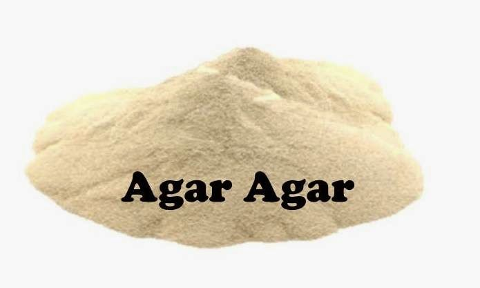 Benefits and nutrition of agar agar for health and how to - Comment utiliser l agar agar comme coupe faim ...