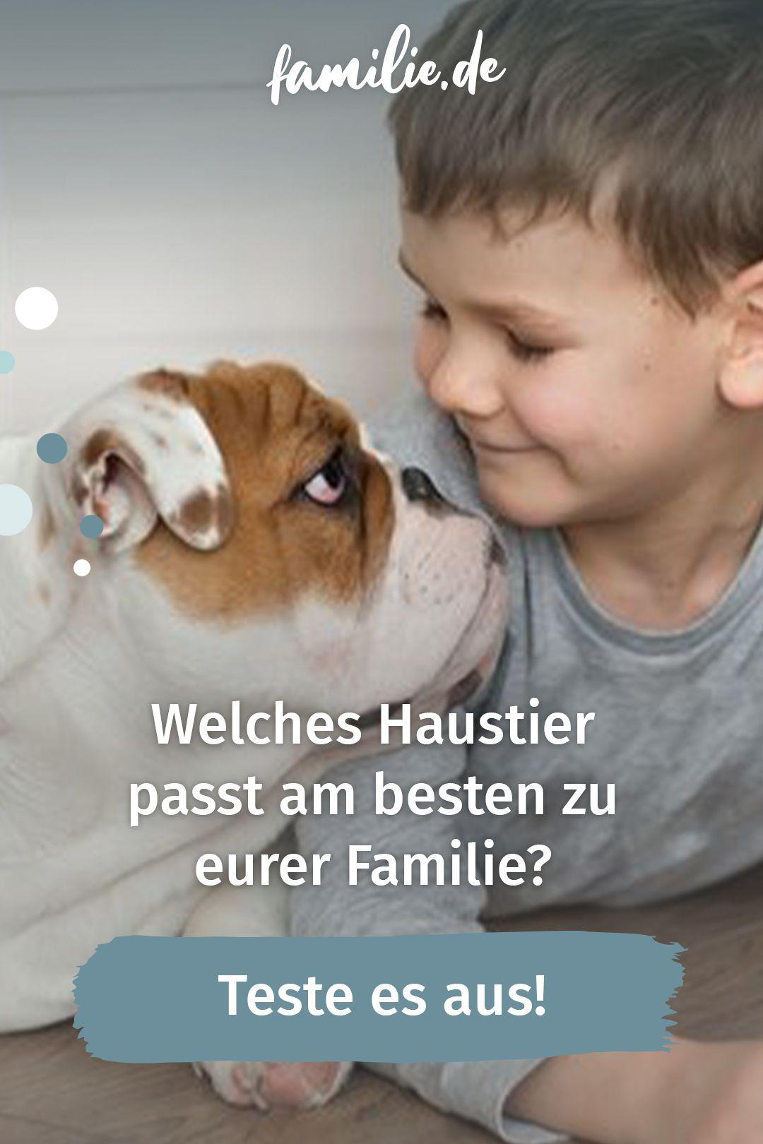 Psychotest Welches Haustier Passt Am Besten Zu Eurer Familie Haustier Tiere Familienleben