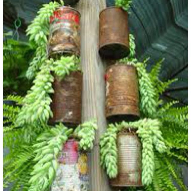 Cool Cheap Way To Plant A Herb Garden.