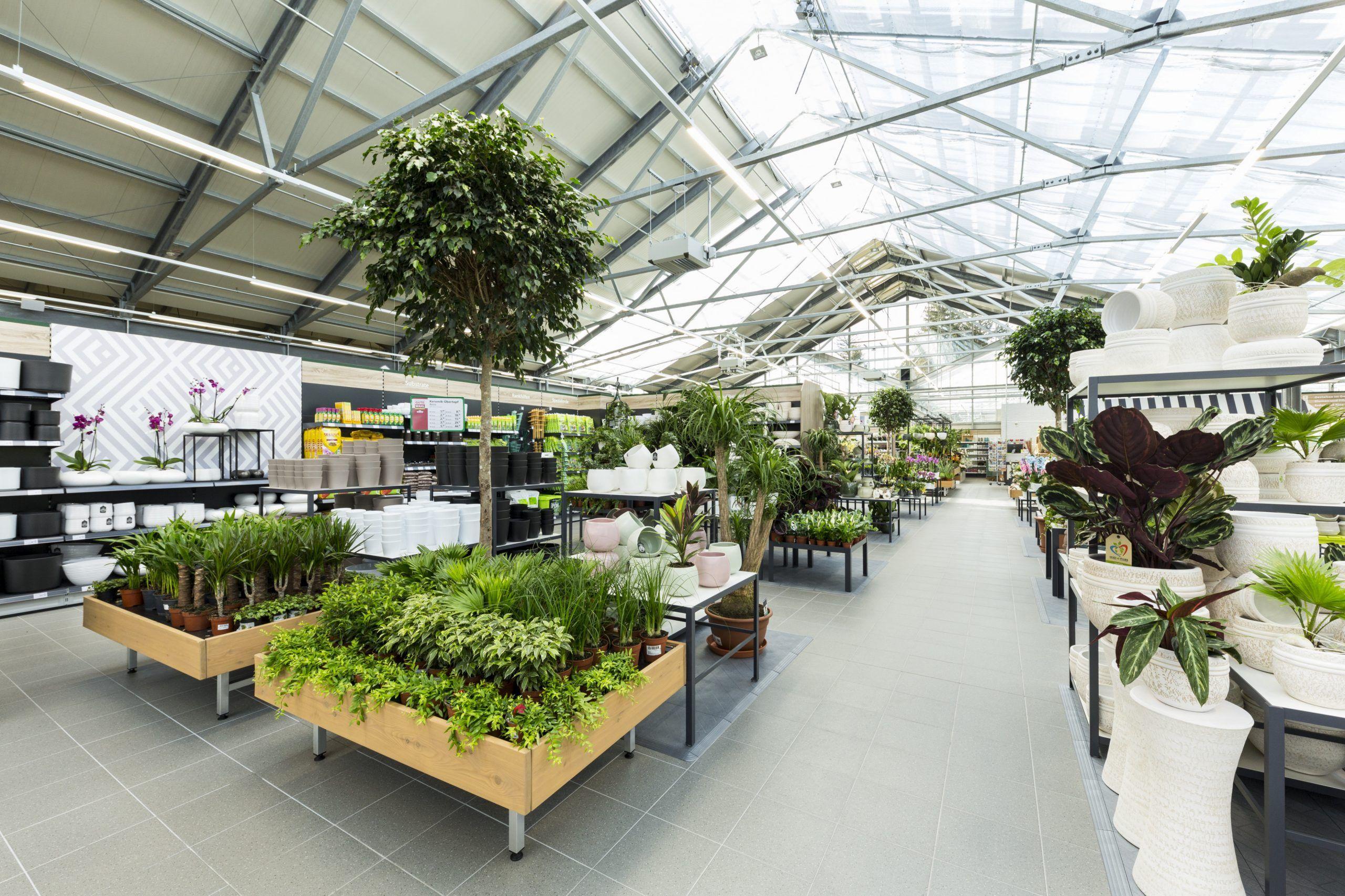 Garten Dehner Garten Gartencenter Garten Ideen