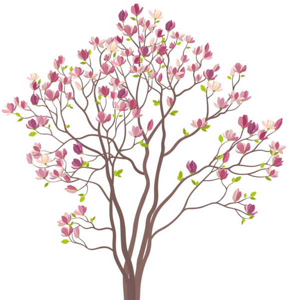 Mmagnolia Tree Png Clip Art Image Tree Drawing Simple Art Images Free Clip Art
