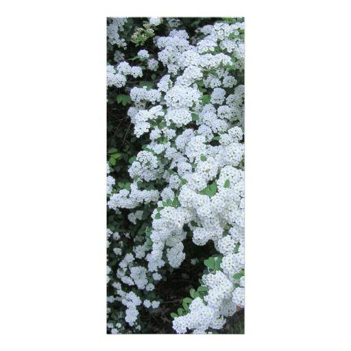 White Cascading Flowers (photog) Party Invitation
