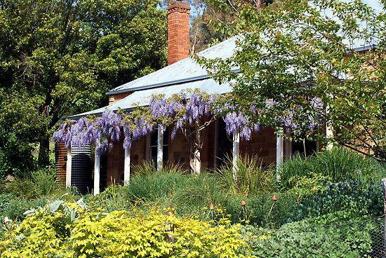 cottage garden taking over house Exterior Pinterest Wisteria