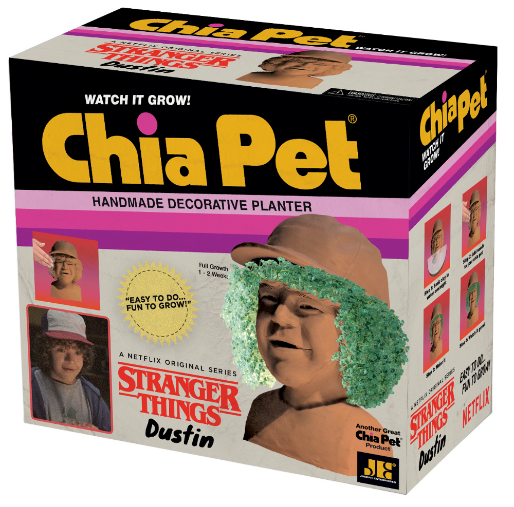 Chia Pet Dustin From Stranger Things Decorative Pottery Planter Easy To Do And Fun To Grow Novelty Gift As Seen On Tv Walmart Com Chia Pet Stranger Things Dustin Stranger Things