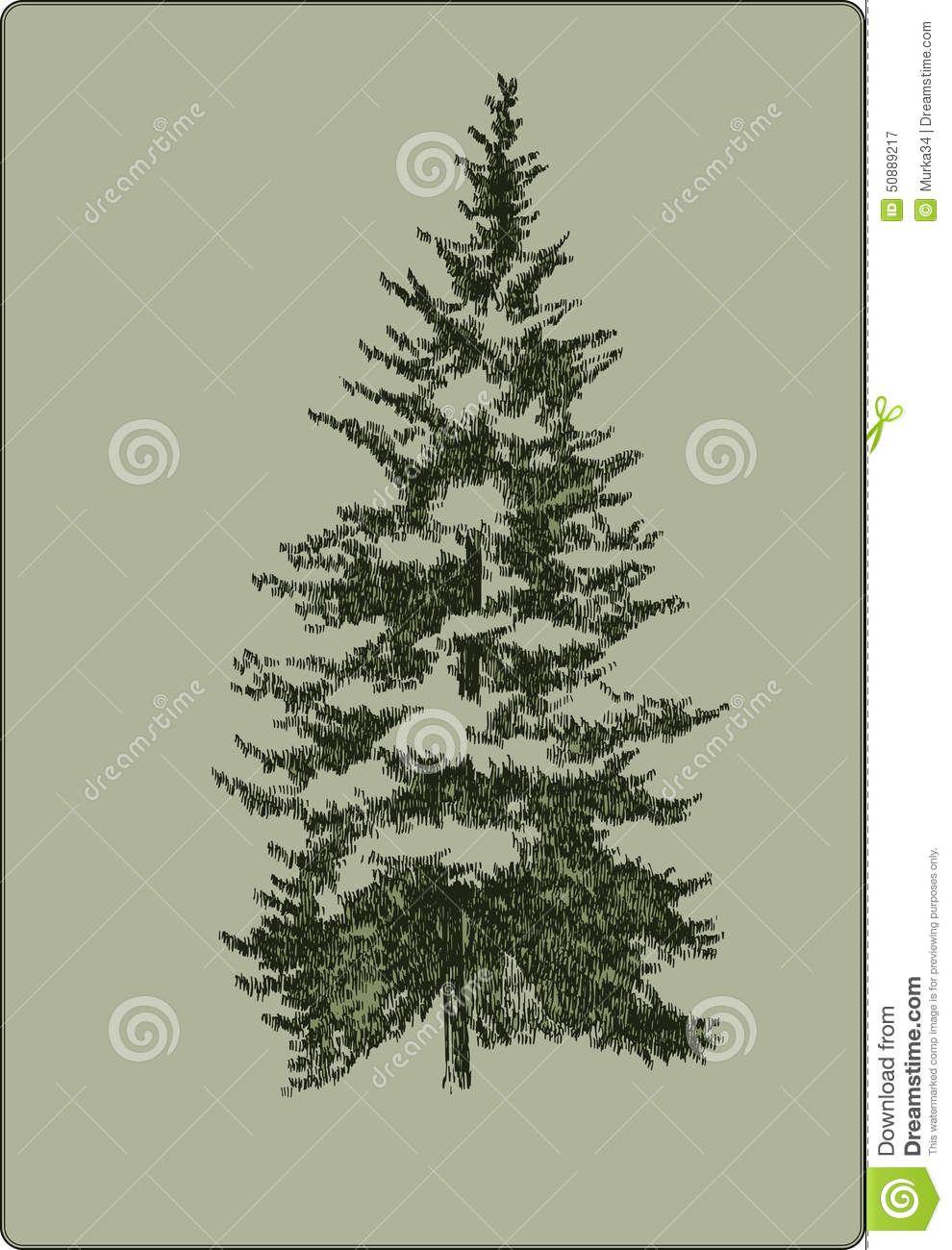 Vintage Christmas Tree Hand Drawing Vector Illustration Vintage Christmas Tree Vintage Christmas Vector Illustration