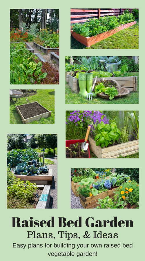 Plans And Ideas For Building A Raised Bed Vegetable Garden Vegetable Garden Planning Garden Layout Vegetable Vegetable Garden Raised Beds