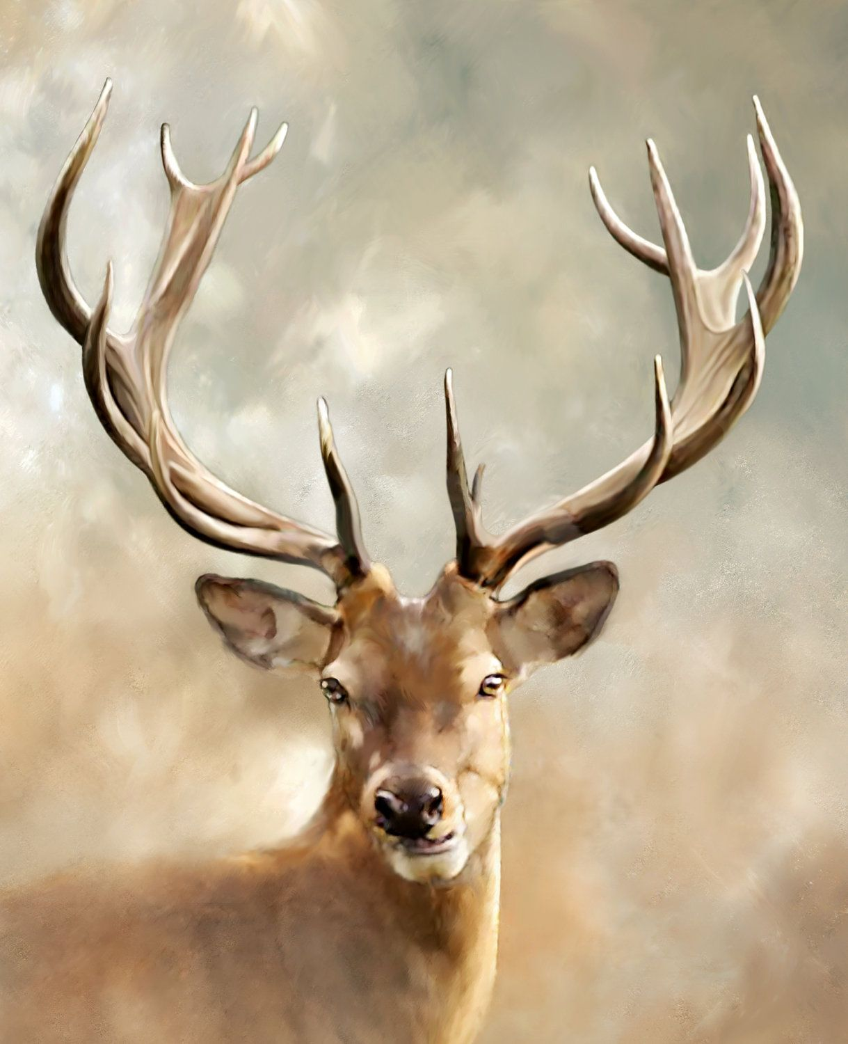 Items similar to Giclee Print, Photograph, Animal Photography, Deer  Photograph, Antlers, 8x10, Tan and Grey, Nature, Masculine, Hunting on Etsy