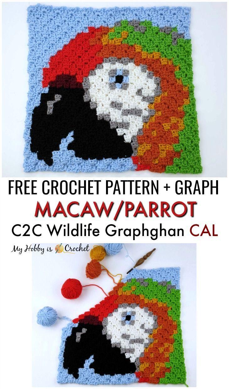 Ara / Parrot C2C Square – faune Graphghan CAL – bloc 16   – c2c