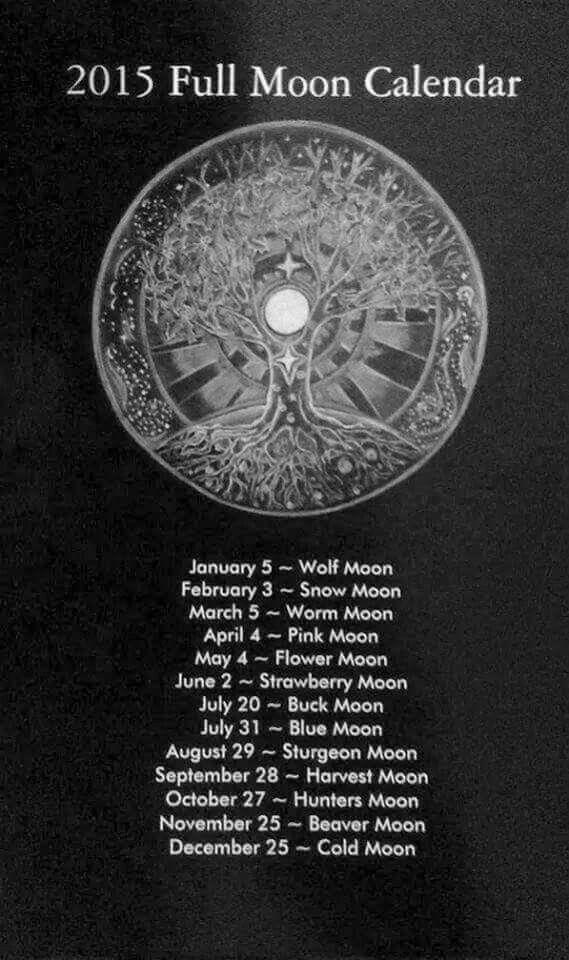 Full Moon Calendar My Epileptic Beagle Has Seizures Around The
