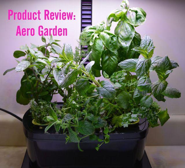 Aerogarden Harvest Wifi: Product Review: AeroGarden Harvest Wifi