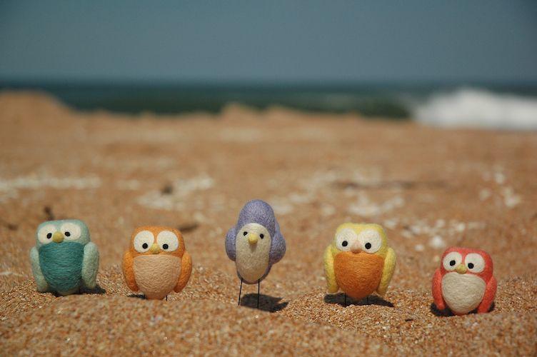 Eulen am Strand
