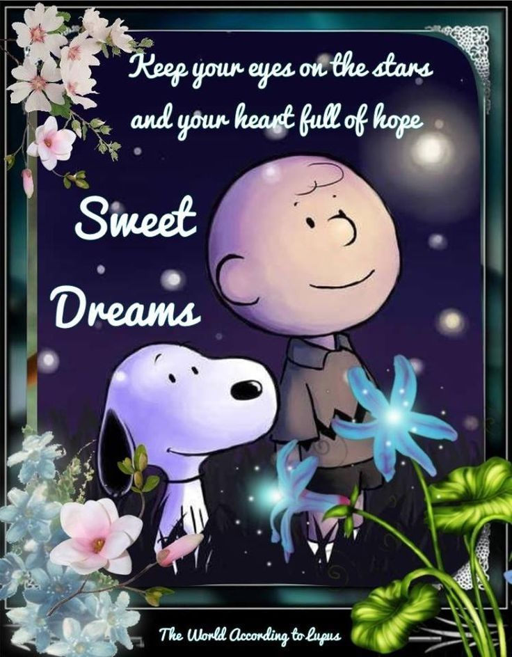 Good Night Cartoon : night, cartoon, Night, Sweet, Dreams, Dreams,, Pictures,, Funny, Quotes