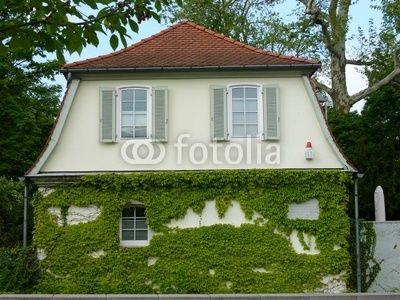 Historisches Gebäude mit begrünter Fassade am Lilipark in