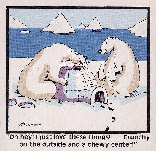 Pin by Christine L on Far Side | The far side, Polar bear hunting, Bizarro  comic