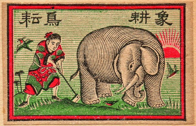 Elephant Fertilizer | Flickr