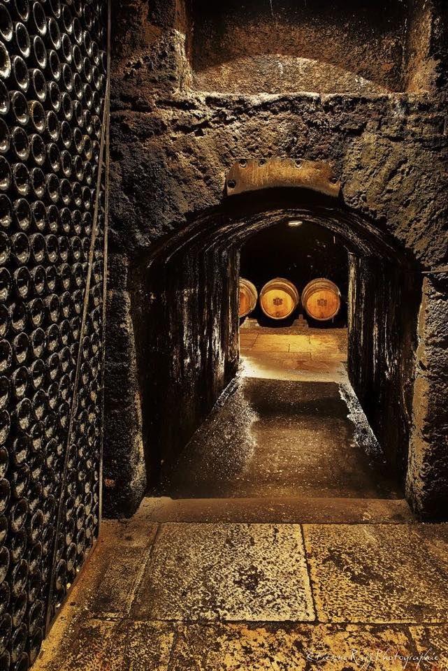 Wijn Kelder Bodegas De Vino Almacenamiento De Vino Y