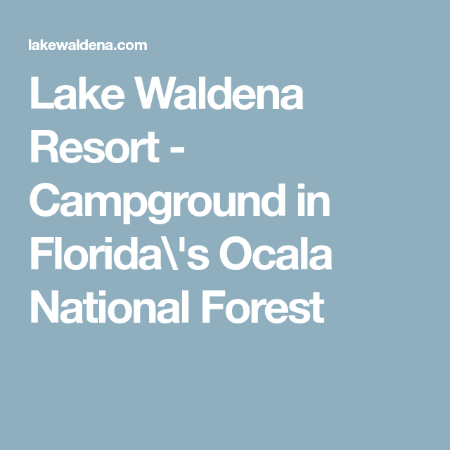 Lake Waldena Resort Campground In Florida S Ocala National