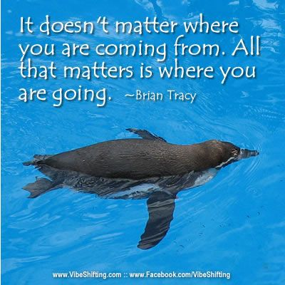 """""""It doesn't matter where you are coming from. All that matters is where you are going."""" ~Brian Tracy  http://www.facebook.com/VibeShifting #quotes #inspiration"""