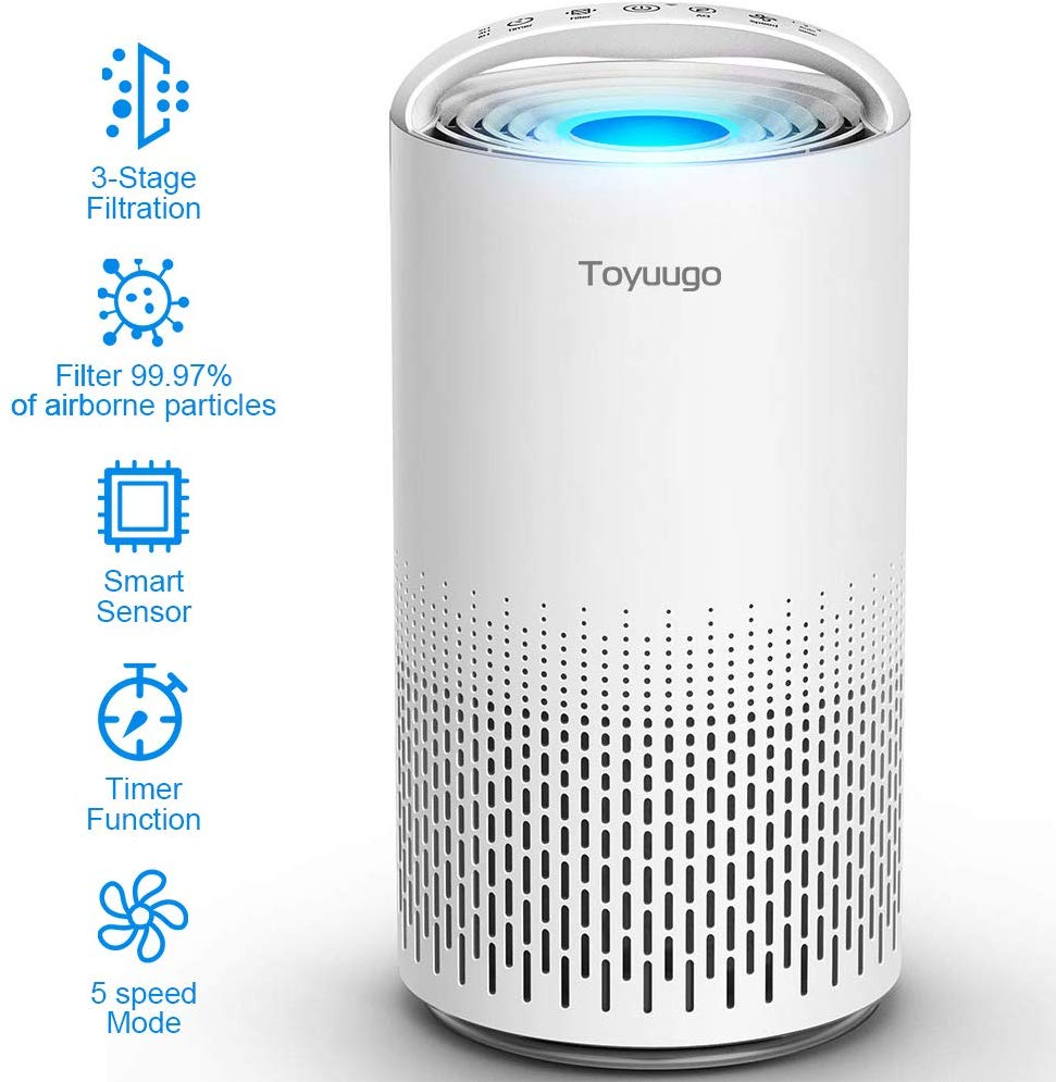 Toyuugo Air Purifier Upgraded Double Efficacy True Hepa Air Cleaner With Active Carbon Filter Air Filter With Ni In 2020 Air Purifier Air Cleaner Portable Air Filter