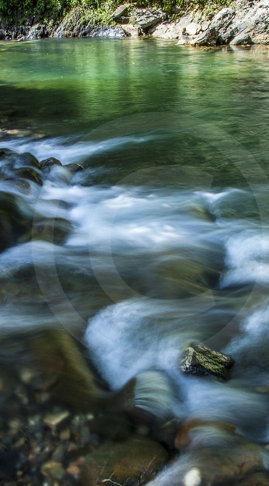 River In Trinidad Cropped For Pinterest Gregory Scott Photography Landscape Photography Trinidad And Tob Landscape Photography Landscape Natural Landmarks