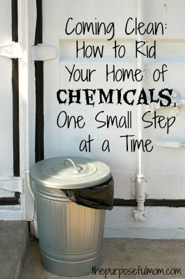 Coming Clean: How to Rid Your Home of Chemicals, One Guilt Free Step at a Time - The Purposeful Mom